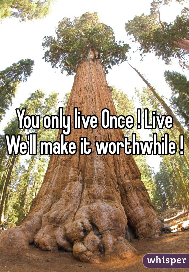 You only live Once ! Live We'll make it worthwhile !