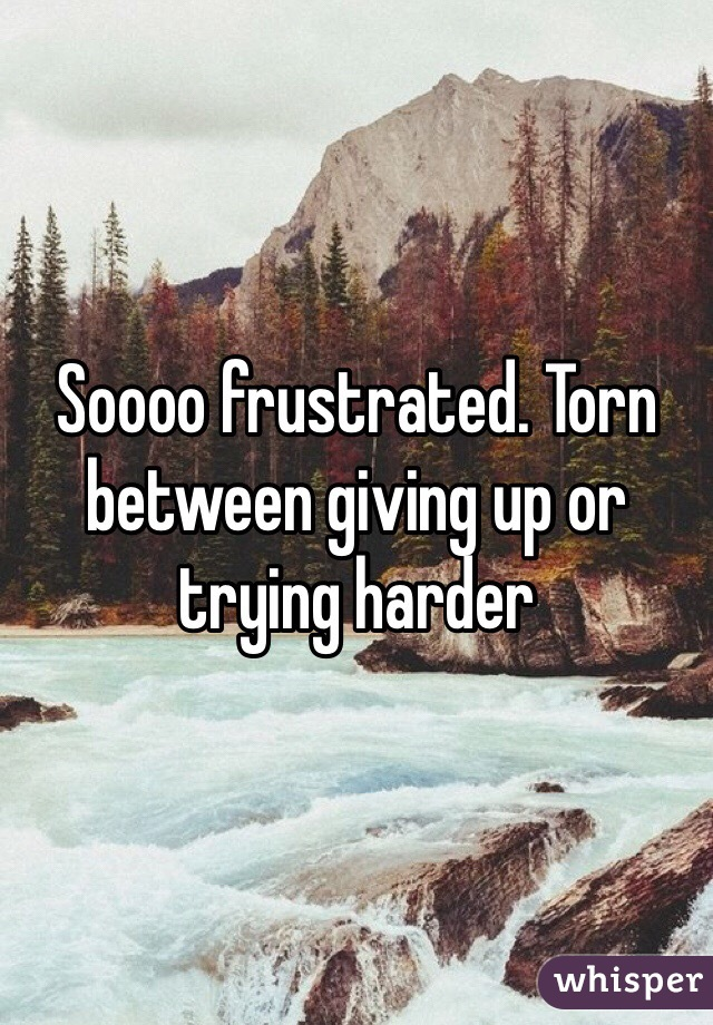 Soooo frustrated. Torn between giving up or trying harder