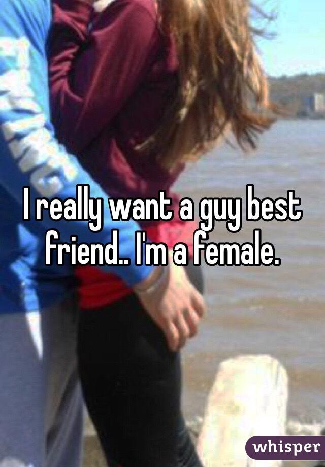 I really want a guy best friend.. I'm a female.