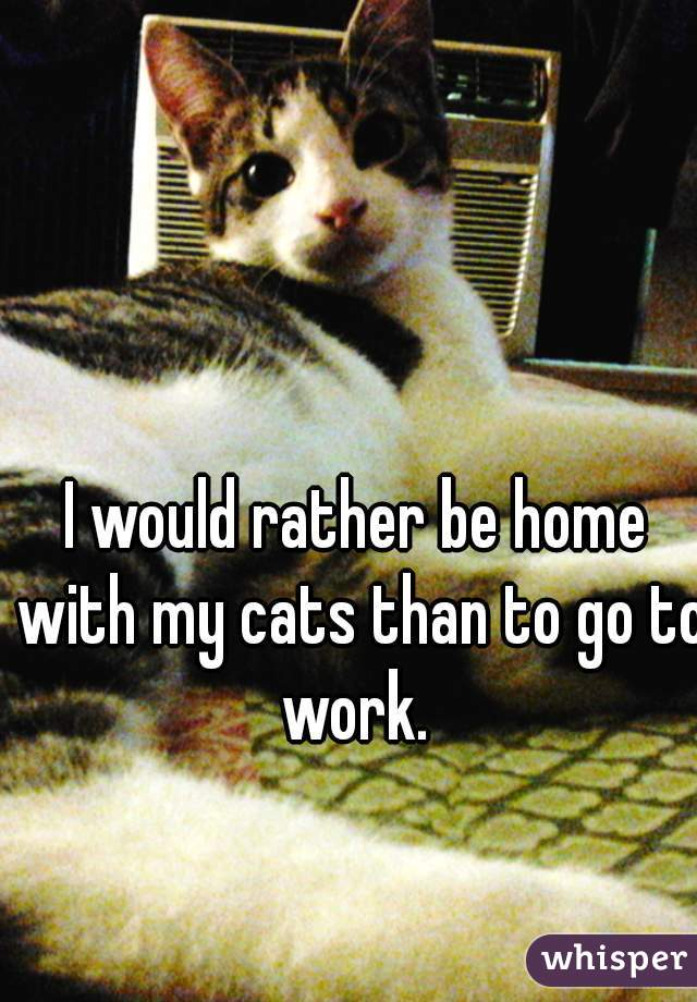 I would rather be home with my cats than to go to work.