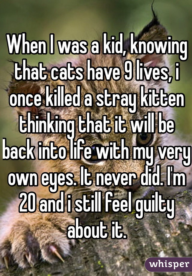 When I was a kid, knowing that cats have 9 lives, i once killed a stray kitten thinking that it will be back into life with my very own eyes. It never did. I'm 20 and i still feel guilty about it.
