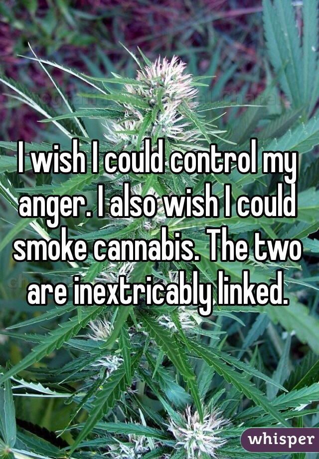 I wish I could control my anger. I also wish I could smoke cannabis. The two are inextricably linked.