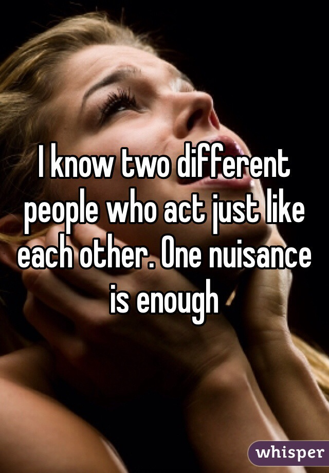 I know two different people who act just like each other. One nuisance is enough