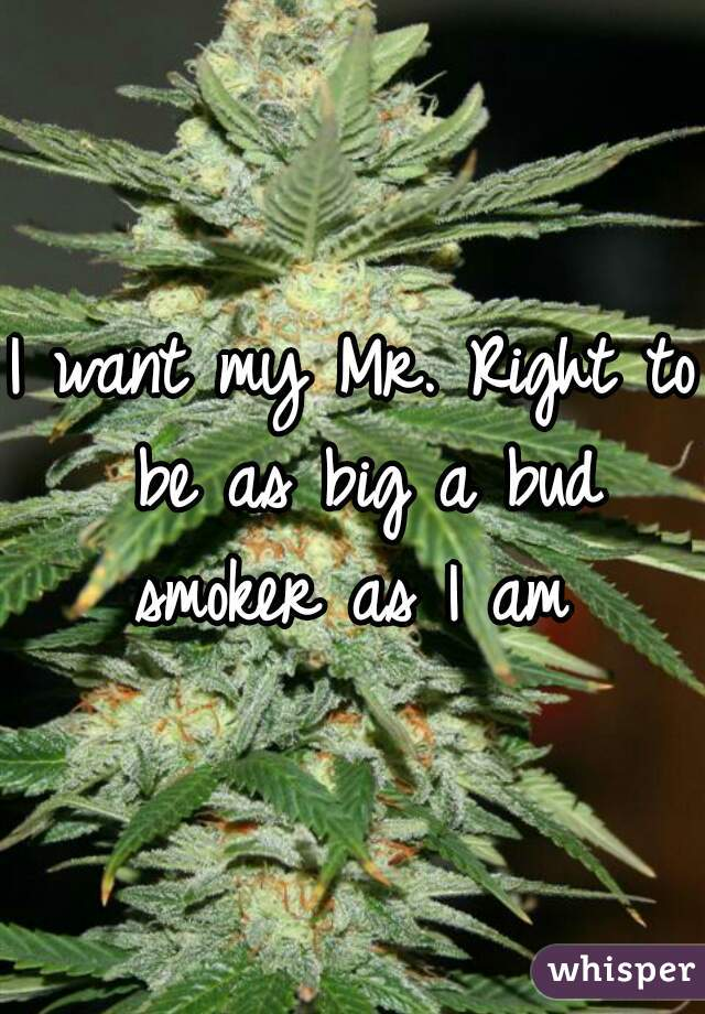 I want my Mr. Right to be as big a bud smoker as I am