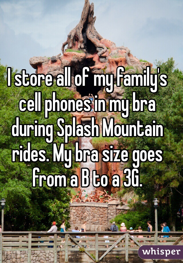 I store all of my family's cell phones in my bra during Splash Mountain rides. My bra size goes from a B to a 3G.