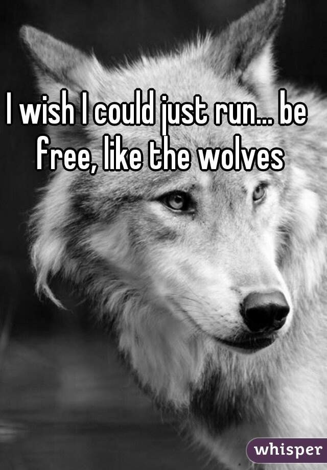 I wish I could just run... be free, like the wolves