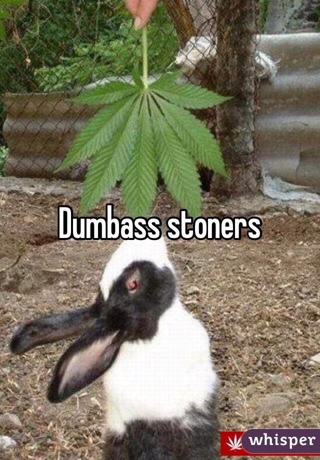 Dumbass stoners