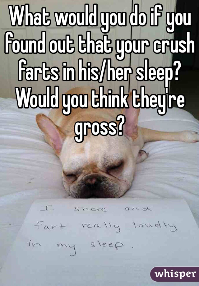 What would you do if you found out that your crush farts in his/her sleep? Would you think they're gross?