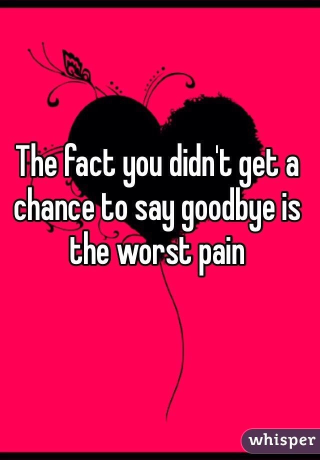 The fact you didn't get a chance to say goodbye is the worst pain