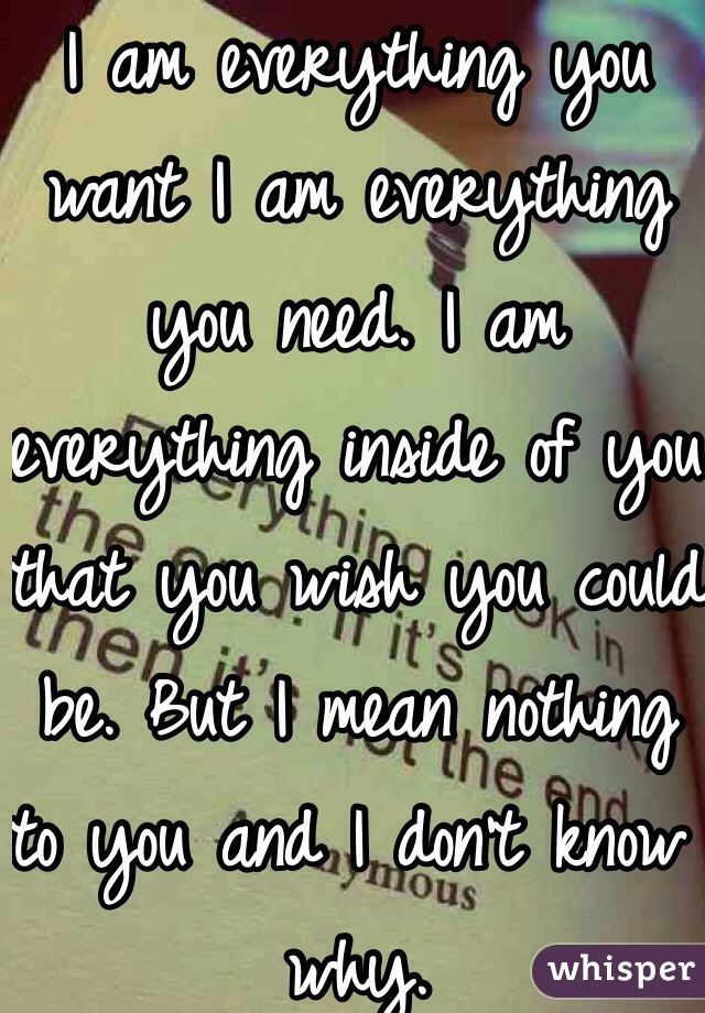 I am everything you want I am everything you need. I am everything inside of you that you wish you could be. But I mean nothing to you and I don't know why.