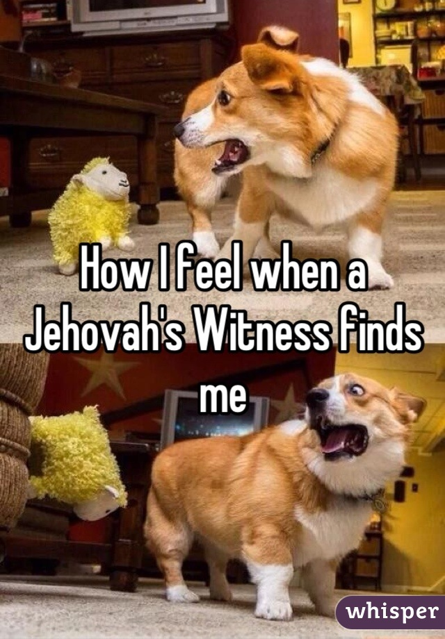 How I feel when a Jehovah's Witness finds me
