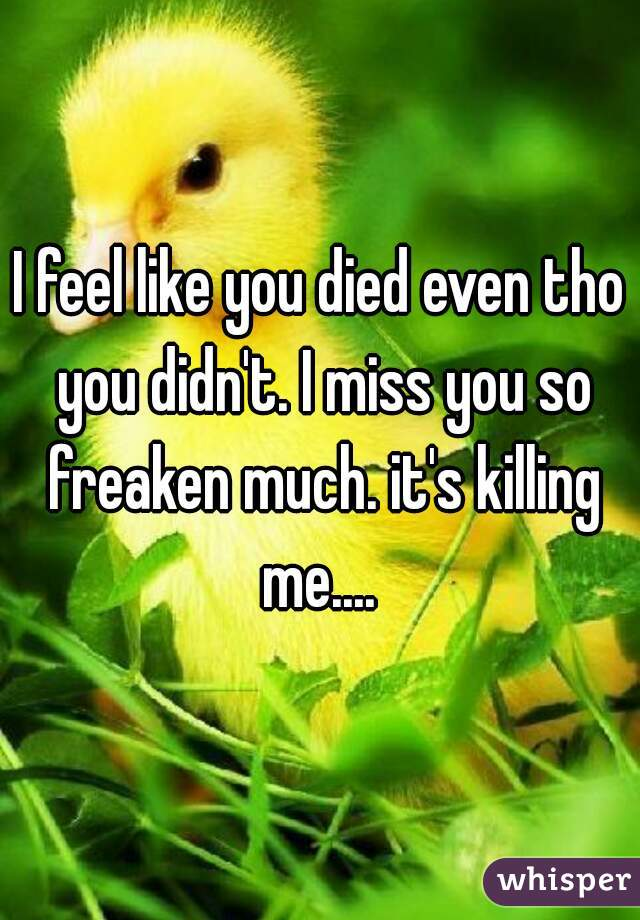 I feel like you died even tho you didn't. I miss you so freaken much. it's killing me....