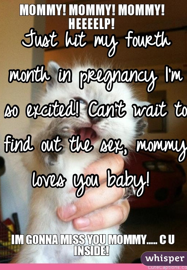 Just hit my fourth month in pregnancy I'm so excited! Can't wait to find out the sex, mommy loves you baby!