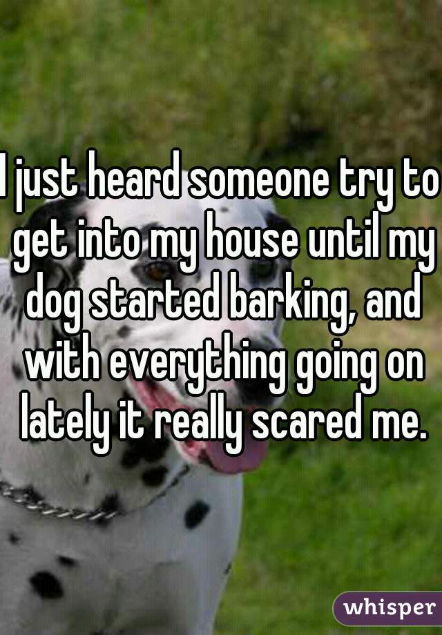 I just heard someone try to get into my house until my dog started barking, and with everything going on lately it really scared me.