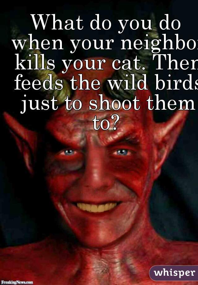 What do you do when your neighbor kills your cat. Then feeds the wild birds just to shoot them to?