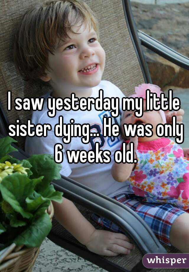 I saw yesterday my little sister dying... He was only 6 weeks old.