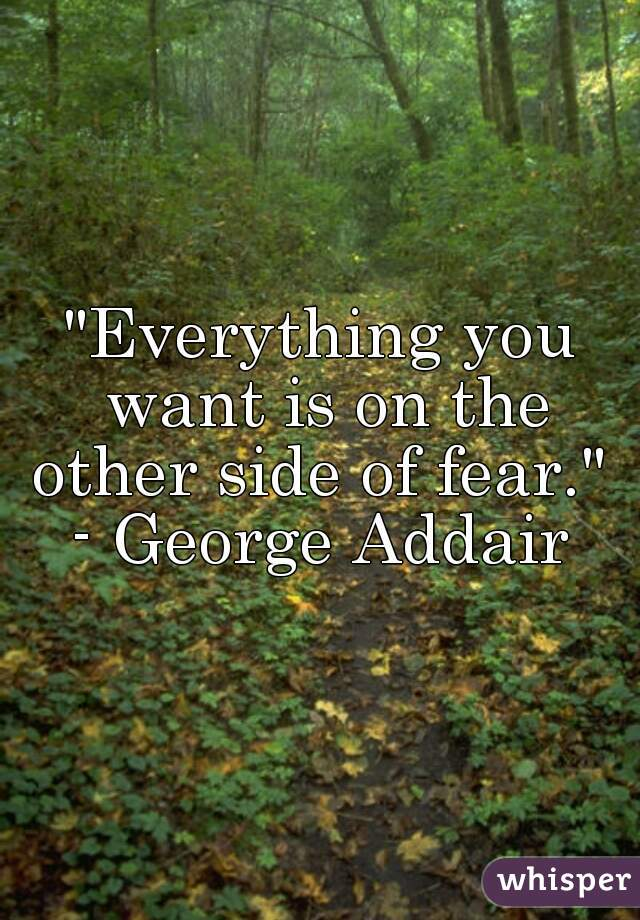 """""""Everything you want is on the other side of fear.""""  - George Addair"""