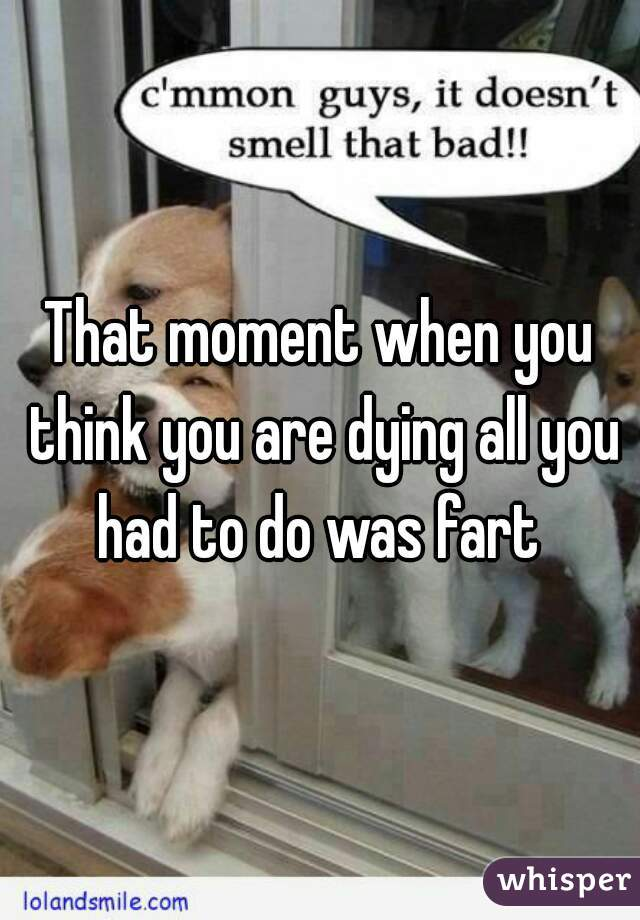 That moment when you think you are dying all you had to do was fart