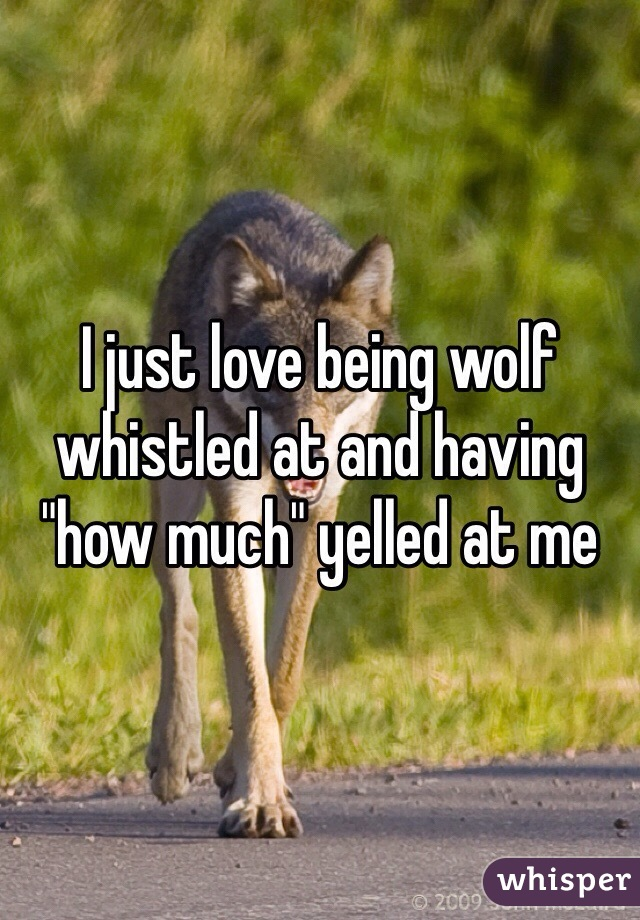 """I just love being wolf whistled at and having """"how much"""" yelled at me"""