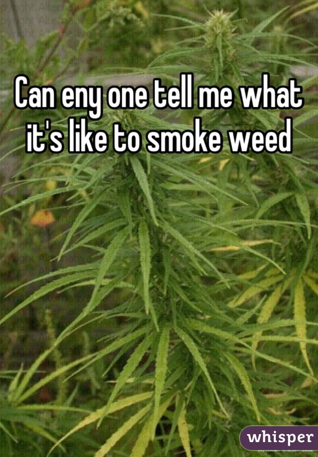 Can eny one tell me what it's like to smoke weed
