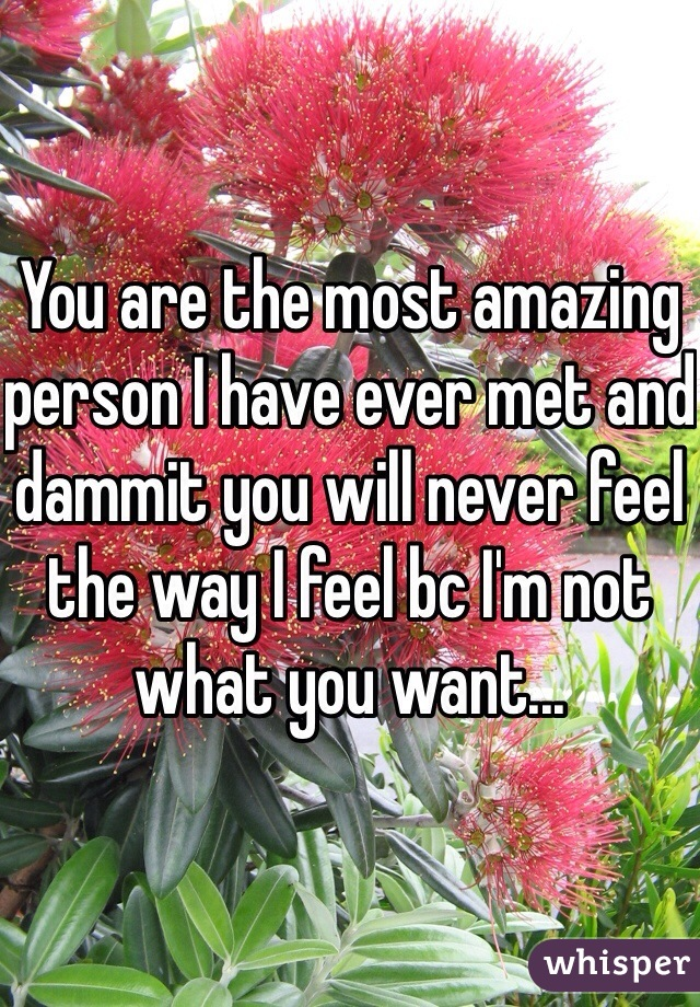 You are the most amazing person I have ever met and dammit you will never feel the way I feel bc I'm not what you want...