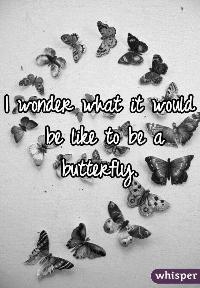 I wonder what it would be like to be a butterfly.