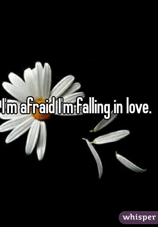 I'm afraid I'm falling in love.