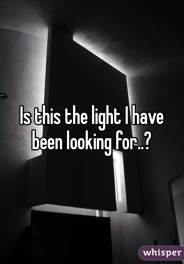 Is this the light I have been looking for..?