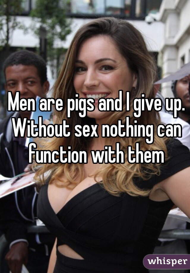 Men are pigs and I give up. Without sex nothing can function with them