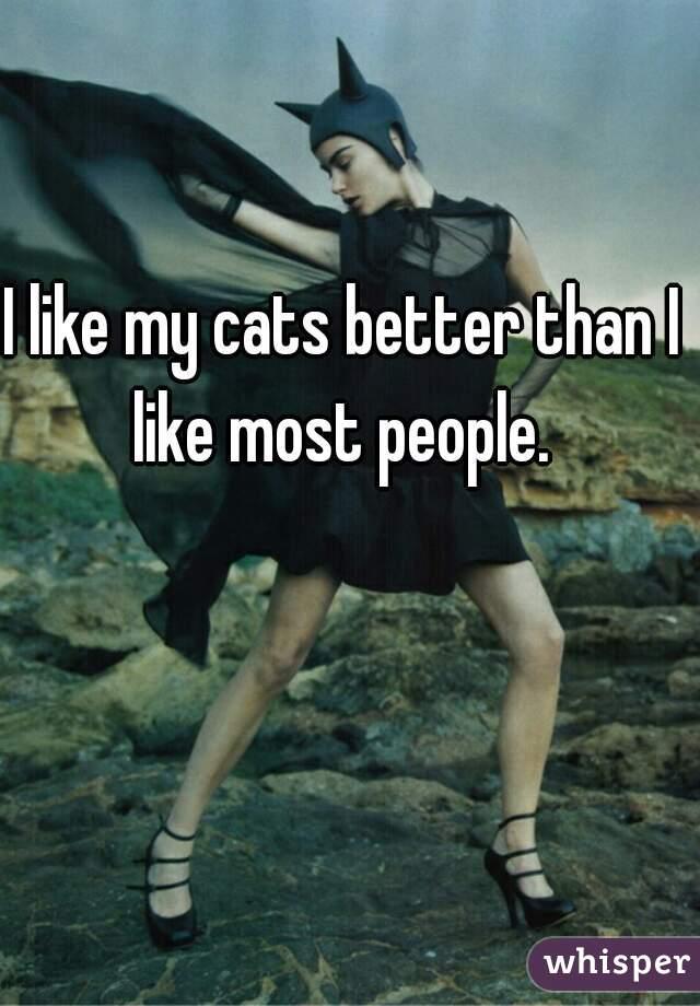 I like my cats better than I like most people.