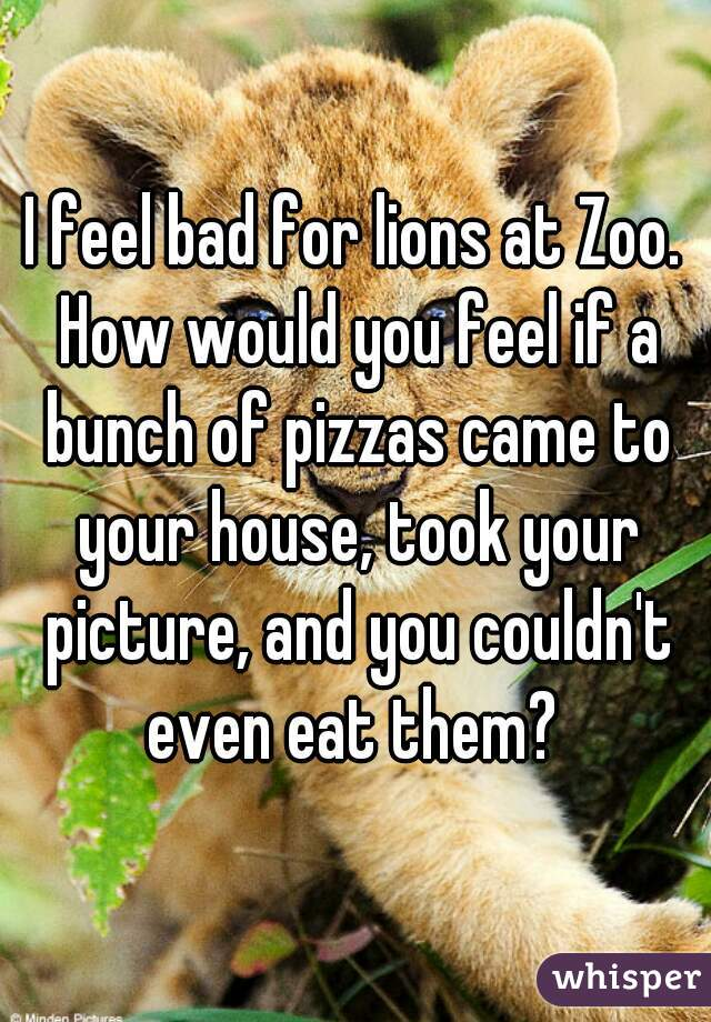 I feel bad for lions at Zoo. How would you feel if a bunch of pizzas came to your house, took your picture, and you couldn't even eat them?