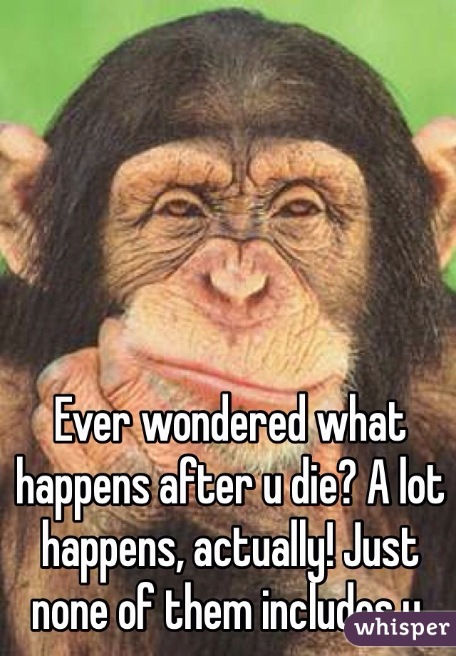 Ever wondered what happens after u die? A lot happens, actually! Just none of them includes u.
