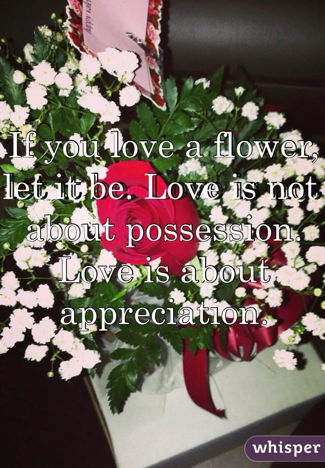 If you love a flower, let it be. Love is not about possession. Love is about appreciation.