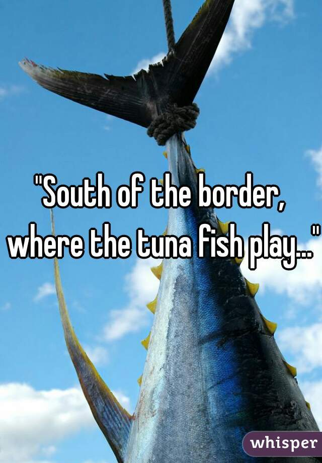 """""""South of the border, where the tuna fish play..."""""""