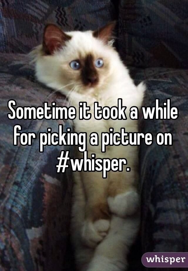Sometime it took a while for picking a picture on #whisper.