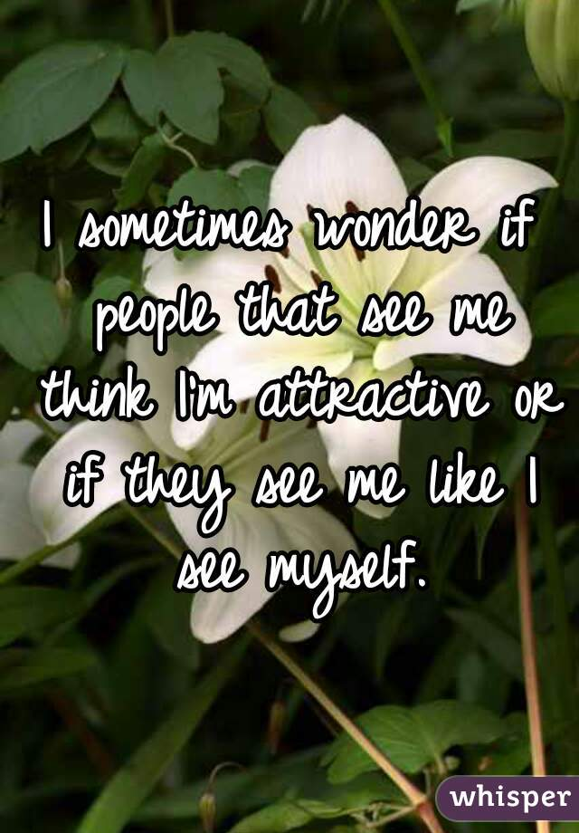 I sometimes wonder if people that see me think I'm attractive or if they see me like I see myself.