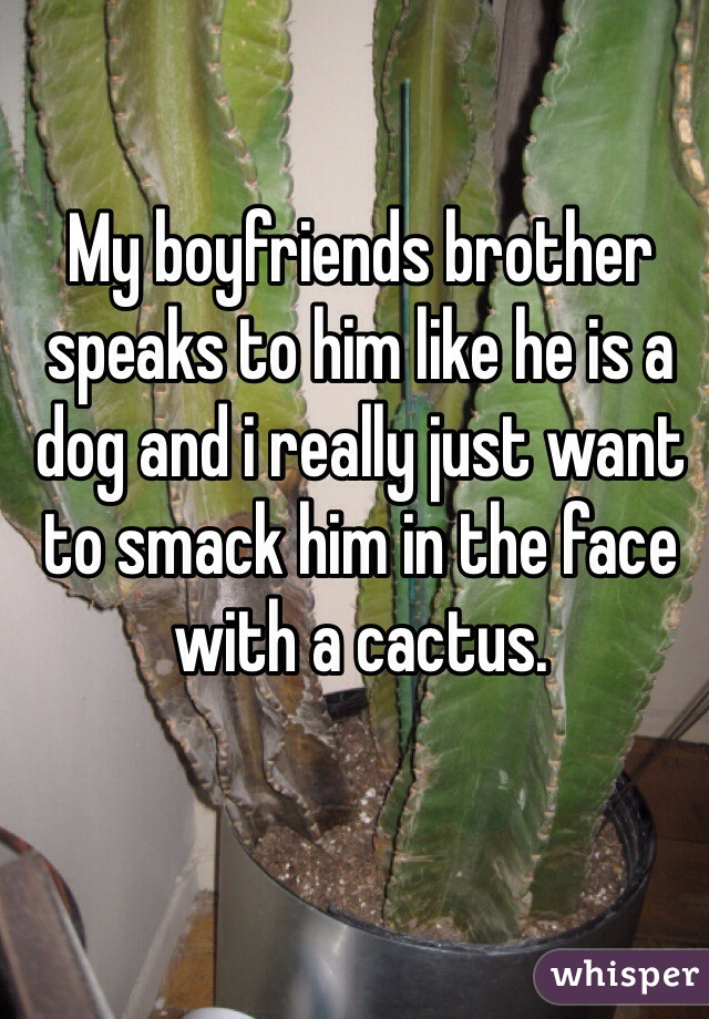 My boyfriends brother speaks to him like he is a dog and i really just want to smack him in the face with a cactus.