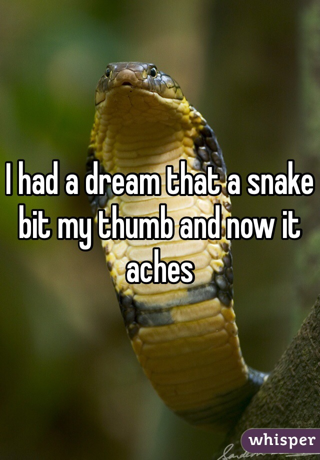 I had a dream that a snake bit my thumb and now it aches