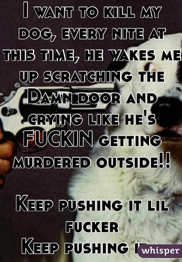 I want to kill my dog, every nite at this time, he wakes me up scratching the Damn door and crying like he's FUCKIN getting murdered outside!!  Keep pushing it lil fucker  Keep pushing it...