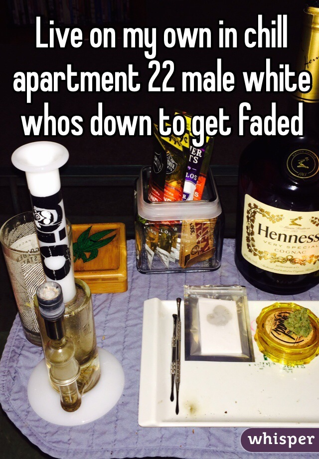 Live on my own in chill apartment 22 male white whos down to get faded