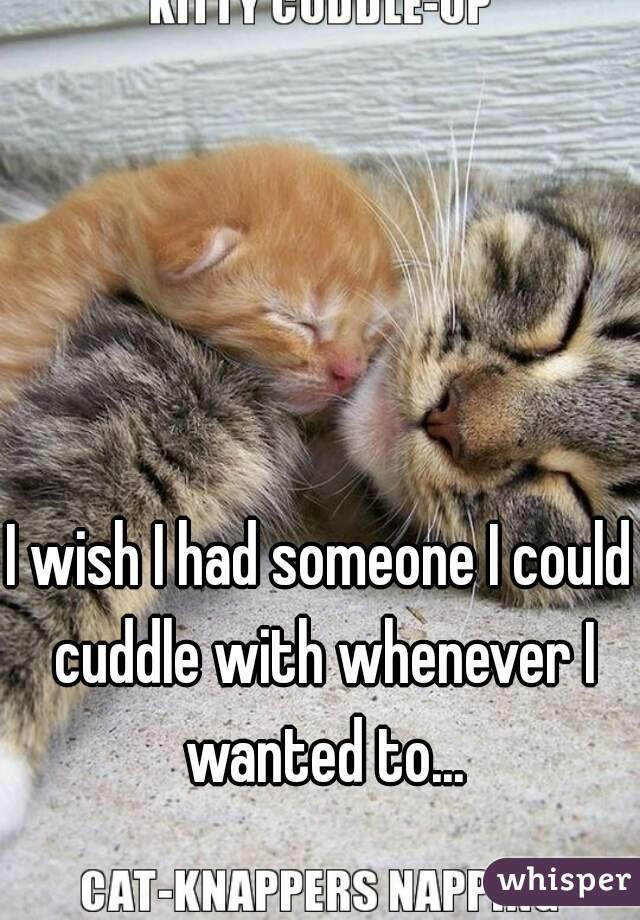 I wish I had someone I could cuddle with whenever I wanted to...