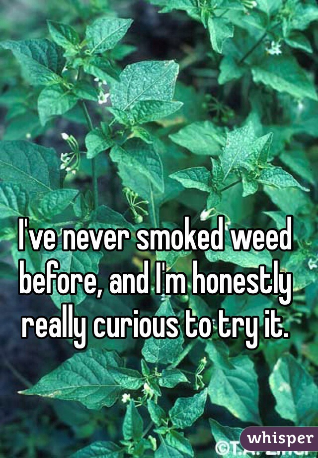 I've never smoked weed before, and I'm honestly really curious to try it.