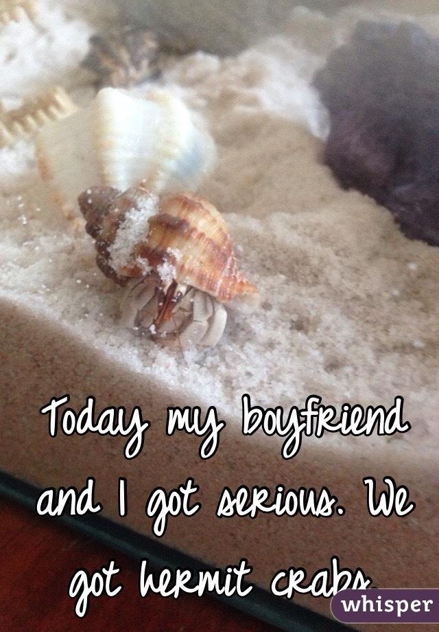 Today my boyfriend and I got serious. We got hermit crabs.