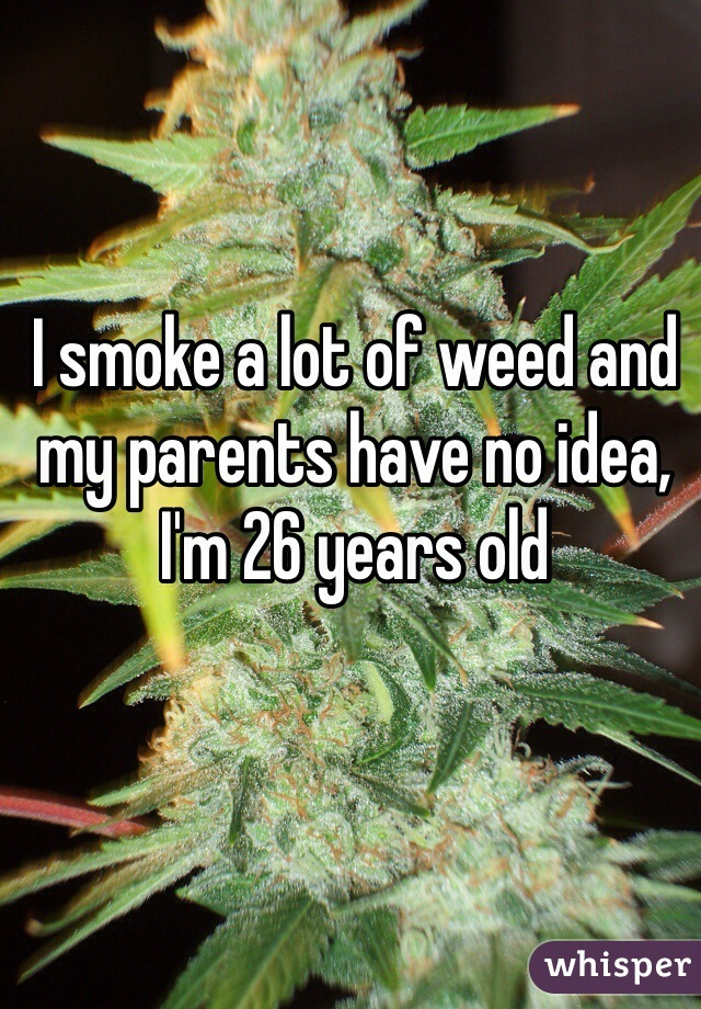 I smoke a lot of weed and my parents have no idea, I'm 26 years old