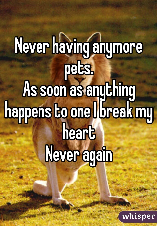 Never having anymore pets.  As soon as anything happens to one I break my heart Never again