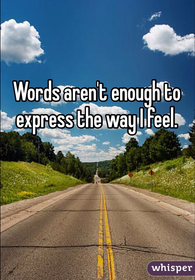 Words aren't enough to express the way I feel.