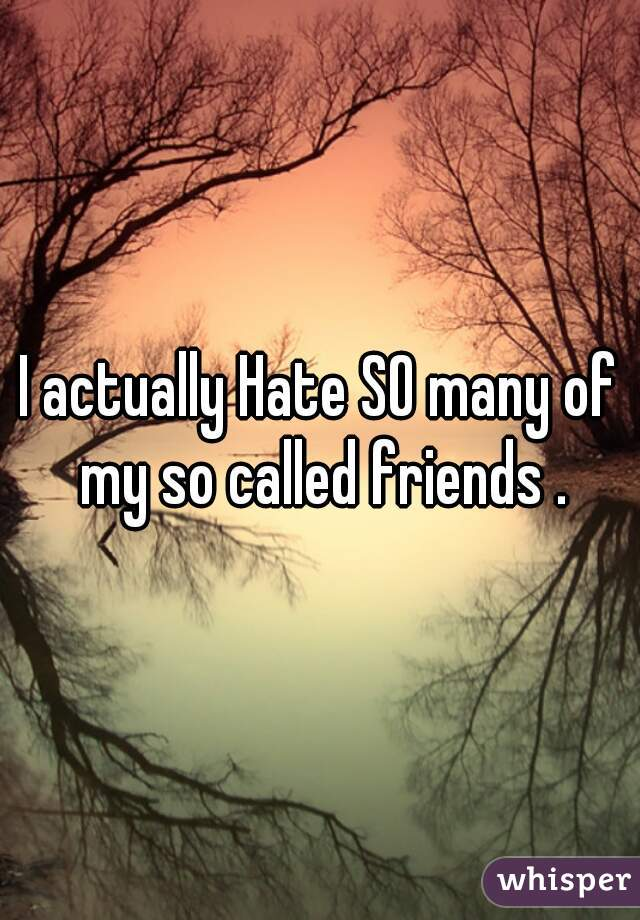 I actually Hate SO many of my so called friends .