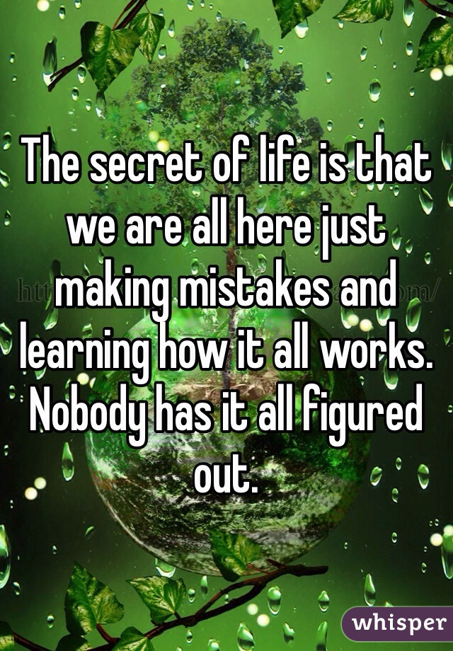 The secret of life is that we are all here just making mistakes and learning how it all works. Nobody has it all figured out.