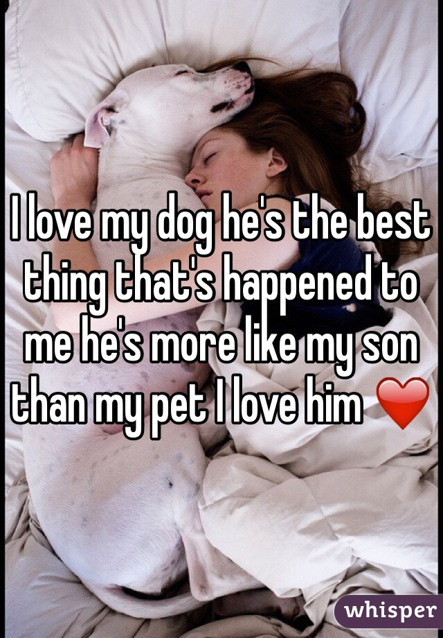 I love my dog he's the best thing that's happened to me he's more like my son than my pet I love him ❤️