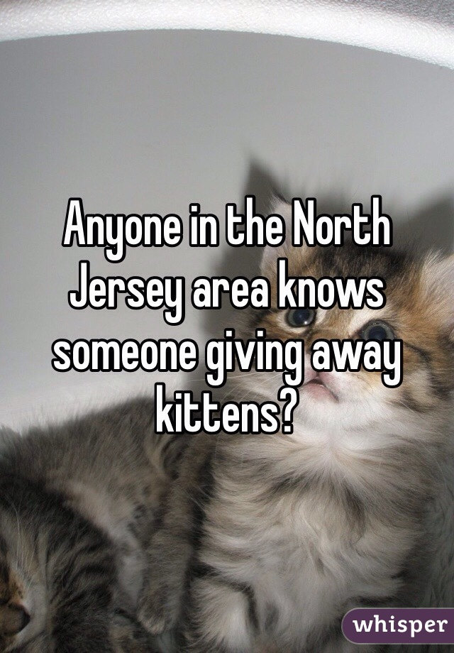 Anyone in the North Jersey area knows someone giving away kittens?